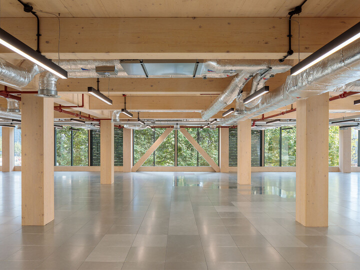 Bringing Timber to the Table: Promoting Innovative Solutions for a Net Zero Future